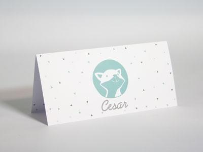 Cesar Fox cactus geboortekaart