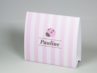Pim Pam roze Pauline geboortekaart